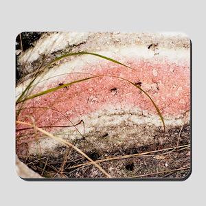 Quartzite metamorphic rock Mousepad