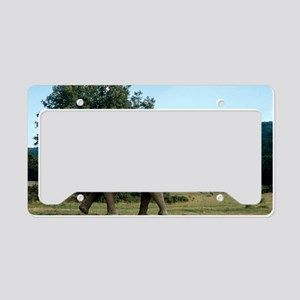 Prehistoric elephant, artwork License Plate Holder