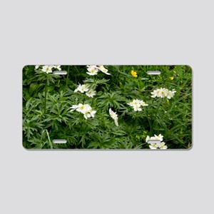 Narcissus-flowered Anemone Aluminum License Plate