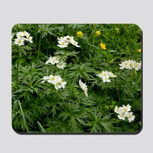 Narcissus-flowered Anemone Mousepad