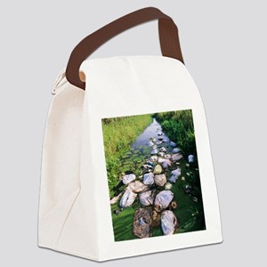 Polluted waterway Canvas Lunch Bag