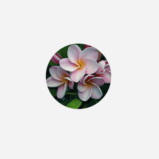 Plumeria flowers Mini Button