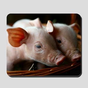 Piglets Mousepad