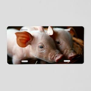 Piglets Aluminum License Plate