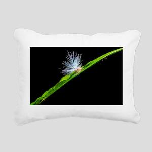 Planthopper nymph Rectangular Canvas Pillow