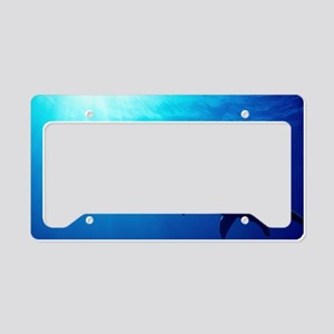 Plesiosaur License Plate Holder