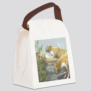 Phoberomys pattersoni, prehistori Canvas Lunch Bag