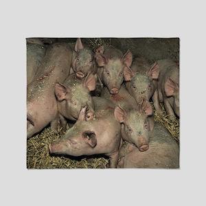 Pigs Throw Blanket