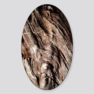 Petrified wood Sticker (Oval)
