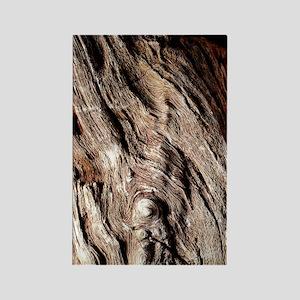 Petrified wood Rectangle Magnet