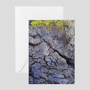 Peat bog Greeting Card