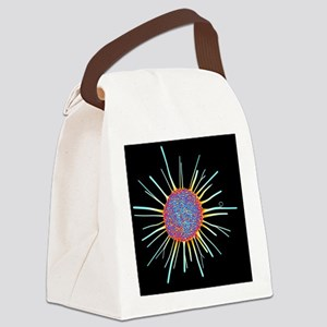 Cancer cell, computer artwork Canvas Lunch Bag