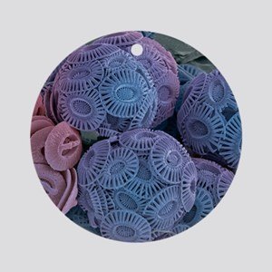 Calcareous phytoplankton, SEM Round Ornament