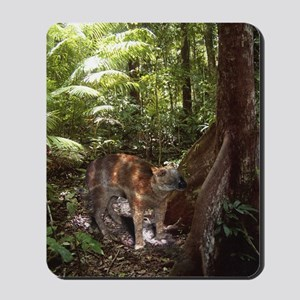 Palaeotherium Mousepad