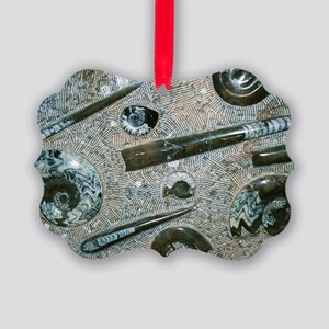Orthoceras and ammonite fossils Picture Ornament