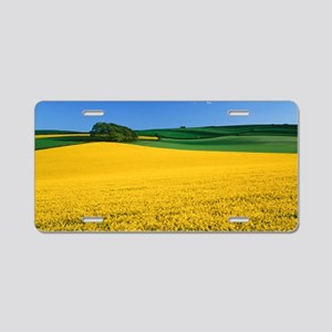 Oilseed rape crop (Brassica Aluminum License Plate