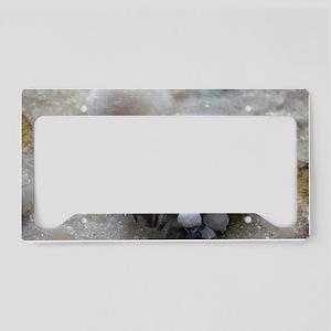 Okenite License Plate Holder