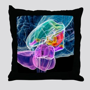 Brain anatomy, artwork Throw Pillow