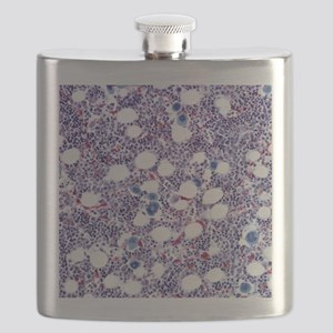 Bone marrow, light micrograph Flask