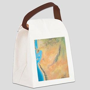 North America, Triassic period Canvas Lunch Bag