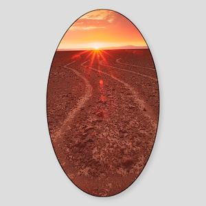 Nazca lines Sticker (Oval)