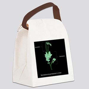Moss anatomy, artwork Canvas Lunch Bag