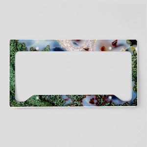 Moss agate License Plate Holder