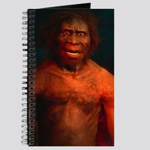 Model of a male Homo erectus man Journal