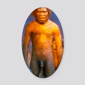 Models of Homo erectus men Oval Car Magnet