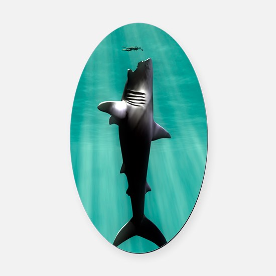 Megalodon prehistoric shark with h Oval Car Magnet