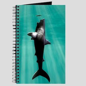 Megalodon prehistoric shark with human Journal