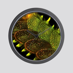 Marine worm fluorescing Wall Clock