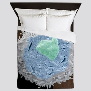 Lymphocyte white blood cell, SEM Queen Duvet