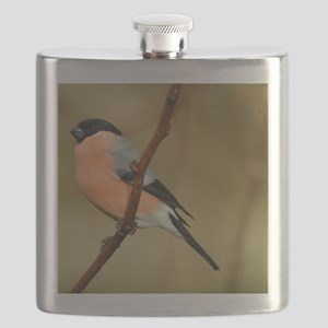 Male Bullfinch Flask
