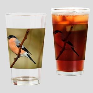 Male Bullfinch Drinking Glass