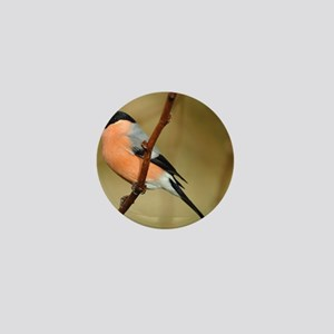 Male Bullfinch Mini Button
