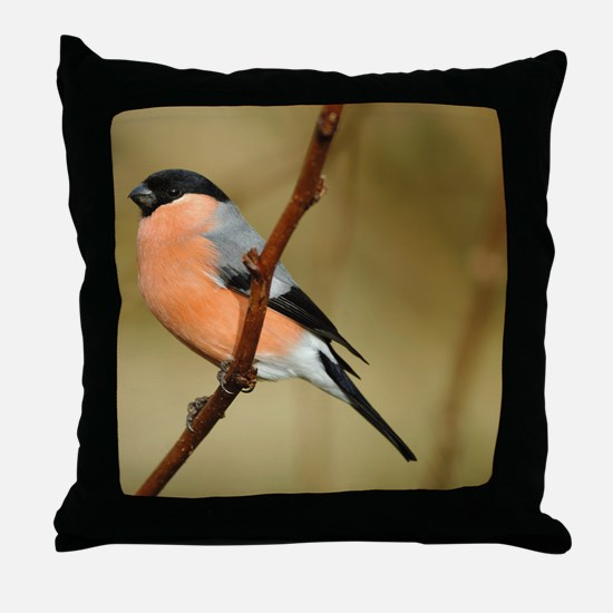 Male Bullfinch Throw Pillow