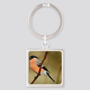 Male Bullfinch Square Keychain
