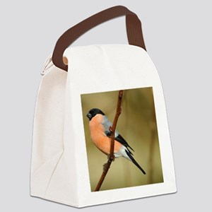 Male Bullfinch Canvas Lunch Bag