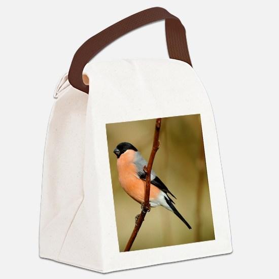 Male Bullfinch Canvas Lunch Bag