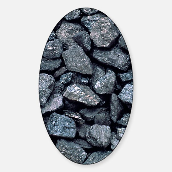 Lumps of high-grade anthracite coal Sticker (Oval)