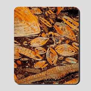 Limestone Mousepad