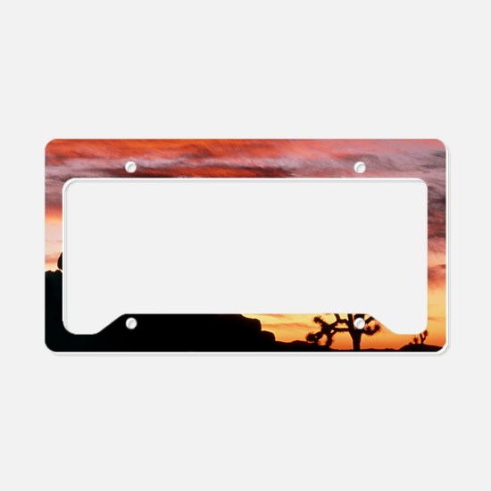 Lenticular cloud, Joshua Tree License Plate Holder