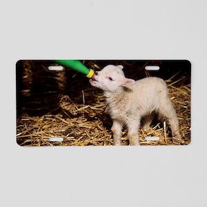 Lamb Aluminum License Plate