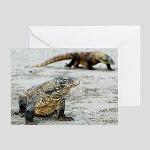 Komodo dragons on a beach Greeting Card