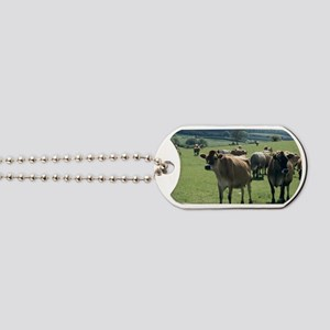 Jersey cows Dog Tags