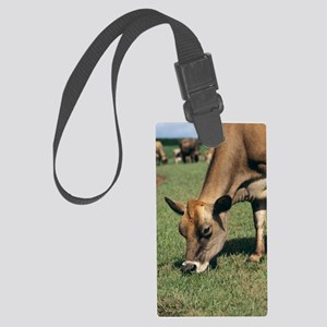Jersey cow Large Luggage Tag