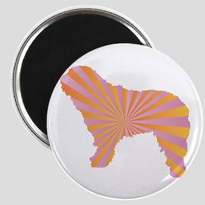 Spanish Rays Magnet