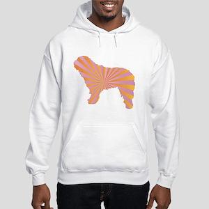 Spanish Rays Hooded Sweatshirt