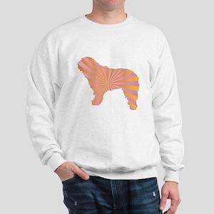 Spanish Rays Sweatshirt
